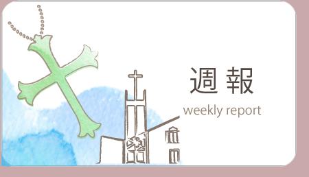 週報 Weekly Report